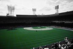 Tiger Stadium Arkivbilder