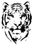 Tiger Stencil Vector. Isolated Illustration Stock Images