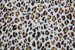 Tiger strip texture Royalty Free Stock Image