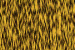 Tiger stripe. Black and yellow stripe at tiger body Royalty Free Stock Image