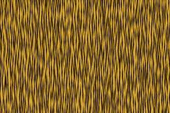 Tiger stripe Royalty Free Stock Image