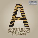 Tiger Stripe Alphabet en Aantallenvector Stock Foto's