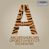 Tiger Stripe Alphabet und Zahl-Vektor Stockbild