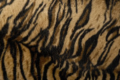 Tiger stripe fabric, faux fur texture. Shades of brown with black Royalty Free Stock Images