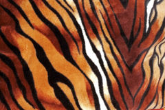 Tiger stripe texture as pattern for background Royalty Free Stock Image
