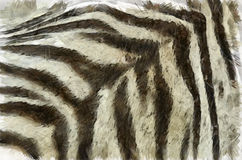 Tiger striped pattern Stock Images