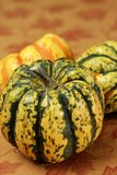 Tiger striped pumpkin Stock Photography