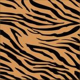 Tiger stripes Stock Image