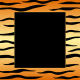 Tiger stripes frame Stock Photos