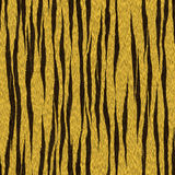 Tiger Stripes Skin Seamless Pattern Royalty Free Stock Photography