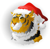 The tiger - a symbol of 2010. Isolated. EPS 8 Stock Photos
