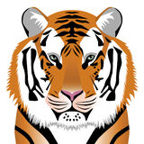 Tiger - symbol 2010 year. Vector illustration Stock Images