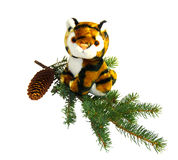 Tiger - symbol of the new year 2022 Royalty Free Stock Photography