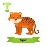 Tiger. T letter. Cute children animal alphabet in vector. Funny Stock Photos