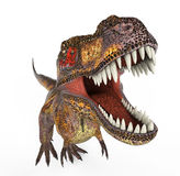 Tiger t rex Stock Photography