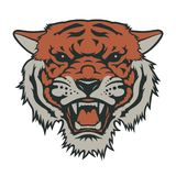 Tiger t-shirt 007. Tiger head, vector illustration. T-shirt graphics Stock Images