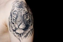 Tiger tatoo Royalty Free Stock Photos