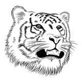 Tiger, tattoo Royalty Free Stock Photo