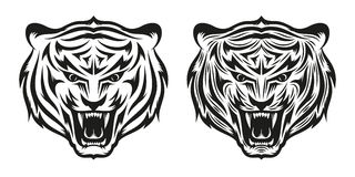 Tiger Tattoo Photos stock