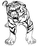 Tiger tattoo Royalty Free Stock Photos