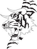 Tiger Tattoo Stock Image