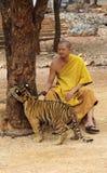 Tiger Temple em Kanchanaburi Fotos de Stock