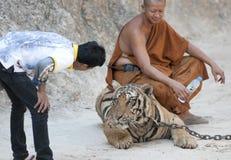 Tiger Temple Royalty Free Stock Photos