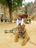 Tiger Temple, Thailand Stock Image