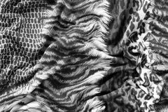 Tiger textile piece of clothes Royalty Free Stock Images