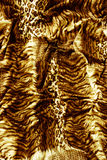 Tiger textile piece of clothes Stock Image