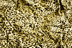 Tiger textile piece of clothes Royalty Free Stock Photography