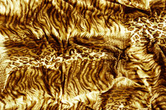 Tiger textile piece of clothes Stock Images