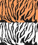 Tiger texture Royalty Free Stock Photography