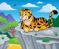 Tiger theme image 2 Royalty Free Stock Photo