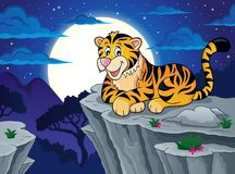 Tiger theme image 3 Stock Images