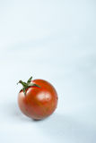 Tiger tomatoes Royalty Free Stock Image