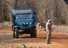 Tiger Tourism Immagini Stock Libere da Diritti