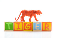 Tiger toy. On white background Royalty Free Stock Photo