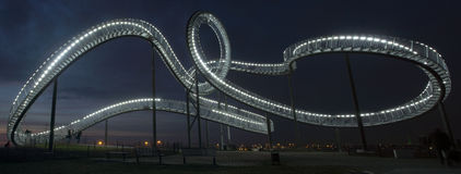 Tiger and Turtle Royalty Free Stock Photography