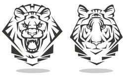 Tiger und Löwe stockfotos