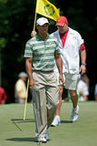 Tiger und Steve Lizenzfreie Stockfotografie