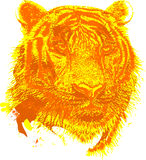 Tiger Vector design clipart Royalty Free Stock Photography