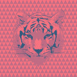 Tiger. Vector fashion illustration Royalty Free Stock Image
