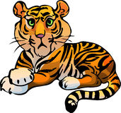 Tiger. Vector illustration Stock Photography