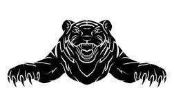 Tiger verärgert Stockbilder