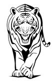 Tiger walk. Illustrator design .eps 10 Vector Illustration