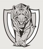 Tiger walk. Illustrator design .eps 10 Royalty Free Stock Image