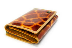 Tiger wallet Stock Image