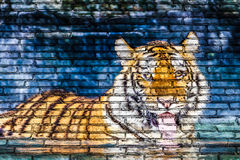 Tiger in water painting on brick wall Stock Photo