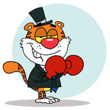 Tiger wearing red boxing gloves. Cartoon character happy tiger with boxing gloves,background Royalty Free Stock Photo
